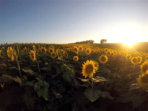 3 Days in the Sunflower State: The Ultimate Kansas Road Trip