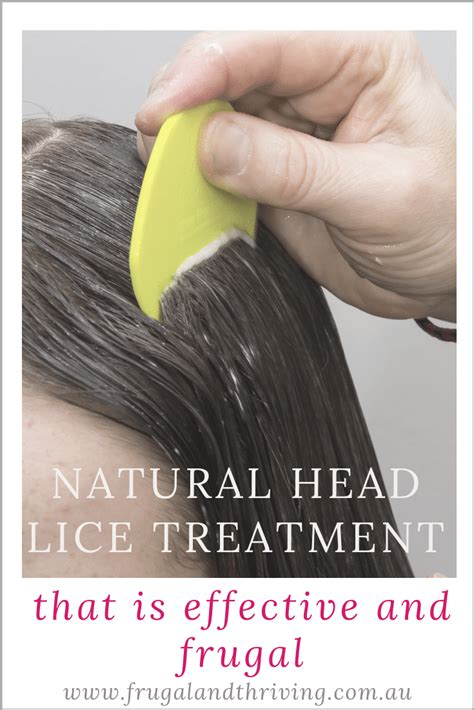 A Natural Lice Treatment That is Effective and Frugal